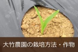 大竹農園の栽培方法