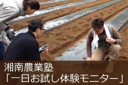 湘南農業塾「一日お試し体験」