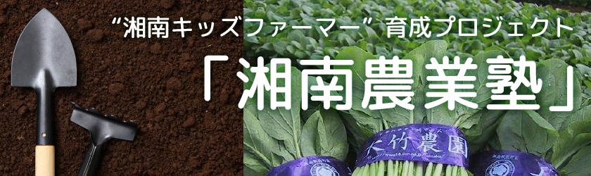 茅ヶ崎・大竹農園の農業体験